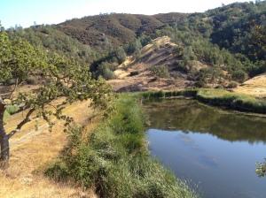 Kelly Lake at 9:00AM