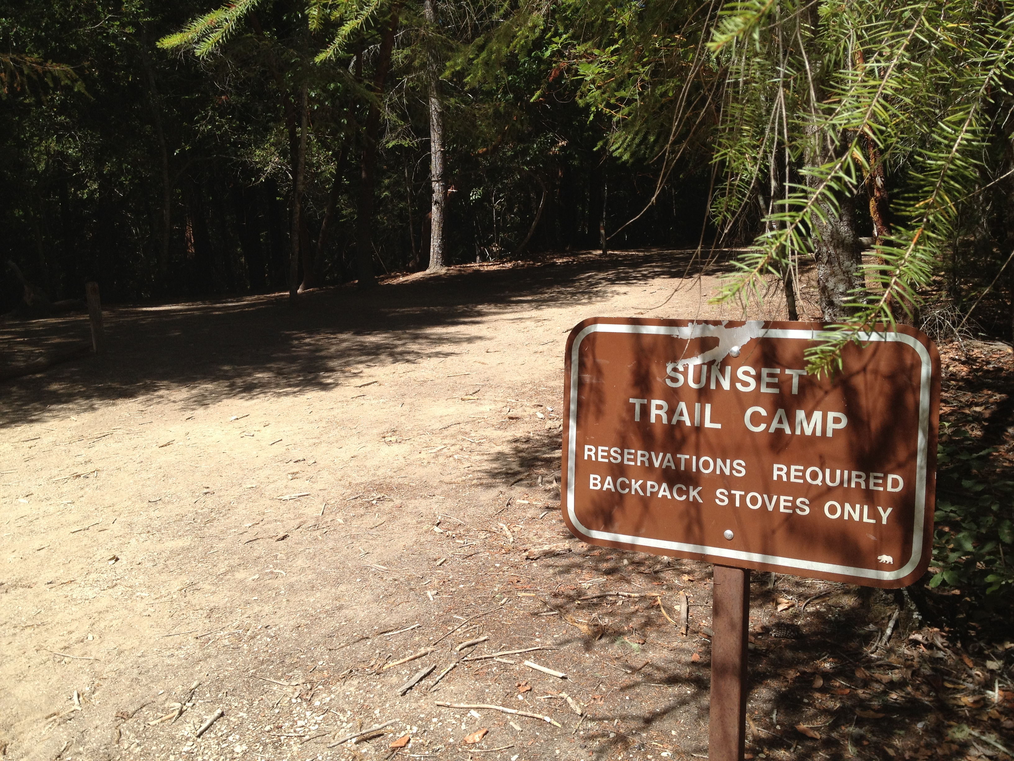 Big Basin State Park: Waddell Beach to Berry Creek Falls & Beyond ...