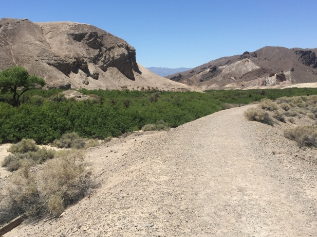 The Amargosa River, looking downstream from China Ranch